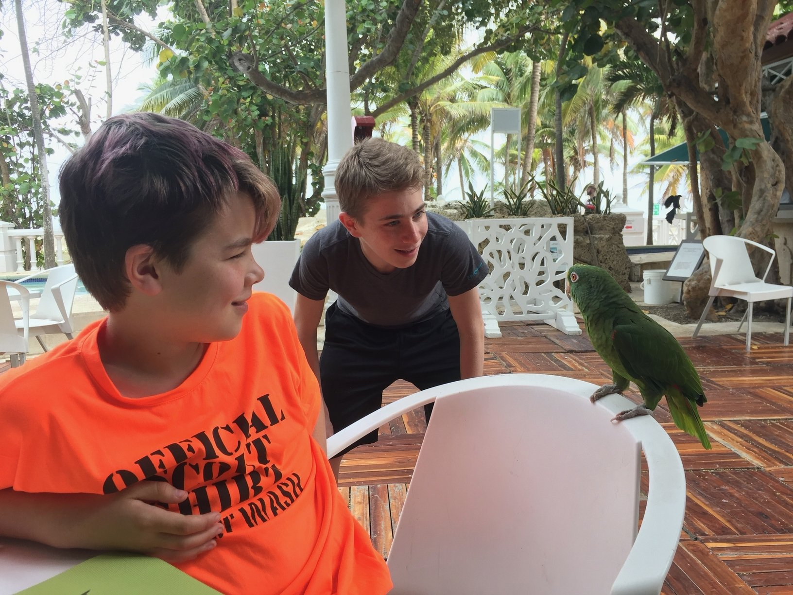 Boys with parrot r